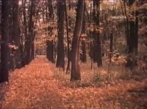 Идеалистка, 1982 год