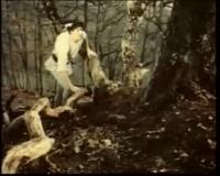 http://www.pesnifilm.com
